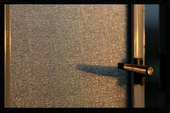 Golden light (Zelda Wynn) Tags: sunset sunlight window golden auckland optics goldendust zeldawynnphotography