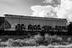 (o texano) Tags: houston texas graffiti trains freights bench benching wyse mayo pear d30 a2m adikts