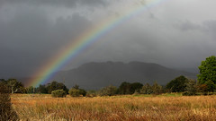 Conic Hill rainbow from Aber bogs (bob the lomond) Tags: bobthelomond gartocharn rspb lochlomond conichill aberbogs