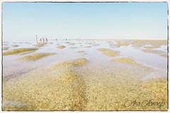 HUELVA (Vanesa Naranjo) Tags: huelva el rompido playa beach andaluca spain espaa