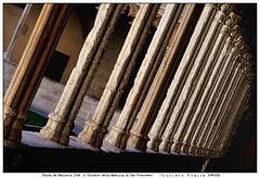 Palma de Mallorca (Alfoja) Tags: palma maiorca mallorca sanfrancesco chiostro chiesa basilica spagna alfoja foglia lucianofoglia