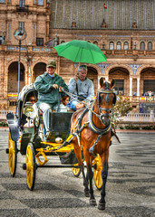 Trotter sous la pluie / Troting in the rain  (www.nathalie-chatelain-images.ch) Tags: espagne spain sville sevilla cheval horse pluie rain parapluie umbrella horsedrawncarriage calche gens people touristes tourists nikon