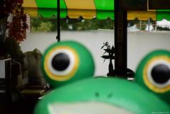 (March Hare1145) Tags:  japan  mttsukubasan mountain  frog   silhouette