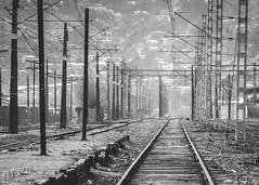 Lineas, postes y rieles ([MKDO]) Tags: postes rieles tren estación lineas laja monochrome monocromo blanconegro blackwithe bw chile travel airelibre