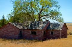 Old House Along The Route (hectic skeptic - I've returned!) Tags: osceola nevada ghosttown prosectorsinn elynevada markamorgan twinfalls snakeriver