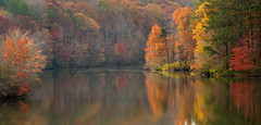 Peaceful November (Jon Ariel) Tags: gwinnettcounty littlemulberrypark lake fall autumn colors trees water metroatlanta atlanta georgia november northgeorgia