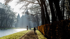 morning walk (soundmoods) Tags: castle netherlands winter lane sun beams tree morning cold de haar utrecht haarzuilen light