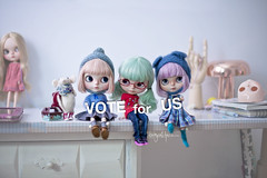 VOTE FOR US  to become Instagramer of the year (_babycatface_) Tags: blythe blythecustom babycatfacedollies babycatface blythedoll custom customblythe customdoll doll dollphotography toy toyphotography takara takaradoll