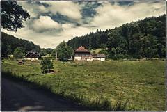 Kinzigtal im Schwarzwald 3 (Babu l'binchou) Tags: allemagne deutchland schwarzwald kinzigtal bollenbach nikond80 nikonaf18200vr colorefexpro4