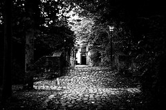 Brgge (efgepe) Tags: oktober belgien belgium belgie brgge bw schwarzweiss schwarzundweiss blackwhite silverefexpro nik park pflaster