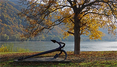 Wachau 16.22 (lady_sunshine_photos) Tags: weisenkirchen wachau herbst autumn baum tree herbsfärbung autumncolors donau fluss anker gegenlicht backlight river anchor waldviertel woodquarter niederösterreich loweraustria at austria österreich europe europa ladysunshine ladysunshinephotos sonyalphanex7 wonderfulworld supershot blätter leafs goldenoctober goldeneroktober farbwolke theworldisbeautiful sundaylights