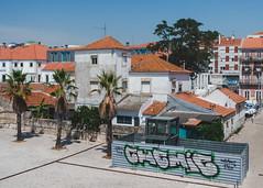Street in Lisbon (V.H. Belvadi) Tags: belvadi d600 europe lisboa lisbon mediterranean nikkor2485mmafsgedvr nikon portugal portuguese vhbelvadi venkatram venkatramharishbelvadi dslr travel vhbelvadicom street documentary houses roofs palm