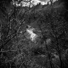 Tropic Ditch #1 (LowerDarnley) Tags: holga utah tropic tropicditch southwest brycecanyon water ditch reservoir branches