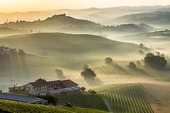 Country Sunrise (carlogaia) Tags: mist langhe roddi alba verduno vigneti vineyards piemonte cuneo cascina farmhouse manure letame country campagna