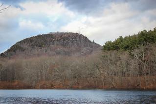 Clarks Pond Views