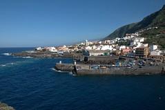 Garachico, Puerto de la Cruz - Punto Teno, Tenerife    DSC_1666 (Cladoniophile) Tags: island atlantic tenerife subtropical canaries canaryislands oceanic macaronesia canaryisles
