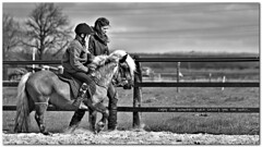 Enjoy the moments wich satisfy you the most.... [explored] (Michel_Derksen) Tags: bw horse amor riding enjoy miranda paard zw genieten quinten rijden