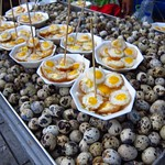 "Quail Eggs <a style=""margin-left:10px; font-size:0.8em;"" href=""http://www.flickr.com/photos/14315427@N00/7076617475/"" target=""_blank"">@flickr</a>"