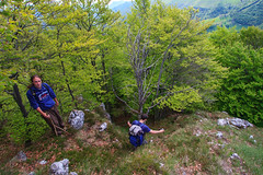 Alla Ricerca del Giuff (Roveclimb) Tags: resegone mountain montagna prealpi lecco manzoni stoppani cermanati creste giuff morterone olino erna escursionismo hiking wood bosco forest alberi trees