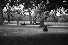Watch The World Go By (Cris Ward) Tags: park lighting uk shadow people blackandwhite bw london monochrome contrast digital garden 50mm prime sitting britain candid sony watching monotone shade desaturated lonely hydepark alpha f18 dslr amateur seated beginner greyscale a450 50mmdtsam