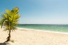 Playa de San Luis — Hotel San Luis Village (Hotel San Luis Village) Tags: ocean blue beach island hotel mar colombia playa palm co caribbean caribe alojamiento sanandres sanandresisland sanandresyprovidencia hotelsanluisvillage