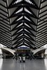 Gare de Saint-Exupéry TGV, Lyon, France (SpaceLightOrder) Tags: france station architecture train airport lyon tgv santiagocalatrava rhone modernity garedesaintexupérytgv