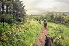 Cabalgata AFZ (Juanedc) Tags: espaa horse rain animal fauna caballo lluvia spain huesca ride fisheye aragon es pyrenees cabalgata pirineo ojodepez equino afz villana fotografosdezaragoza