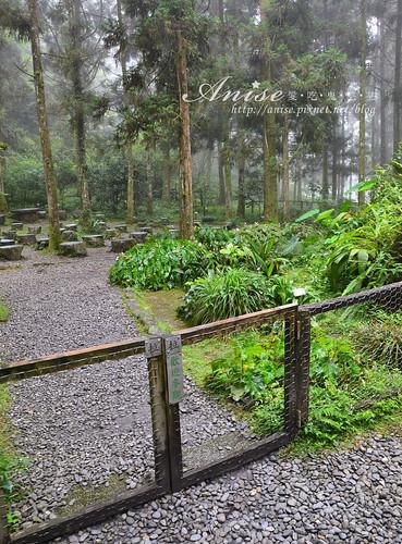 福山植物園_023.jpg