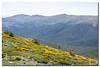 _JRR2791 (JR Regaldie Photo) Tags: mountain snow rocks nieve lagunas sierrademadrid peñalara jrregaldiephoto