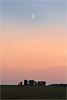 Crescent Moon over Stonehenge (Chris Beard - Images) Tags: uk sunset night landscape july stonehenge wiltshire
