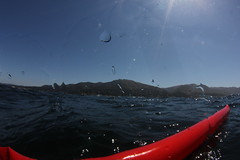 Beautiful Day off Carmel Highlands (Mr. Lobos) Tags: flinstones 14aug2013
