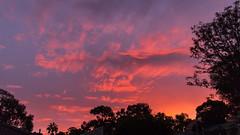 Sunset Surprise (Glen R90) Tags: sunset adelaide stm southaustralia f20 22mm eosm