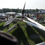 59. Micado bei der Havel-Ruder-Regatta in Werder (Havel) thumbnail