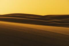 imensidao dourada (elzauer) Tags: brazil nature brasil landscape dunes olympus maranhao lencoismaranhenses omdem5