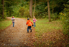 Tormenting His Sisters (Rick Smotherman) Tags: wood trees fall nature leaves kids canon children landscape outdoors 50mm morninglight october day cloudy hiking sister brother overcast 7d grandkids cloudysky canon7d
