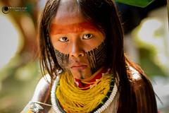 Festival Indígena-177.jpg (wagnerss2009) Tags: bertioga guarani índio pataxó karajá bororo kayapó índiosdobrasil paresí criançakayapó culturaindigina cunhãporã festivalnacionaldeculturaeesporteindígena