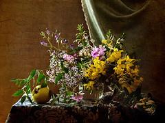 **** (elisevna) Tags: flowers roses stilllife apple yellow blossom stilleben vase wildflowers arrangement naturemorte glassware   memoriesbook