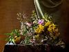 **** (elisevna) Tags: flowers roses stilllife apple yellow blossom stilleben vase wildflowers arrangement naturemorte glassware цветы натюрморт memoriesbook полевыецветы
