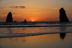 IMGL7045 (komissarov_a) Tags: cannonbeach haystackrock oregoncoast 101 formations tidepools sunsets spectacular ocean viewpoints rocks attraction tides running hiking skyhigh scenic pacific west surprise beautiful sandy shoreline perfect wonderland remarkable refreshing unbeatable stunning scenery unforgettable vistas naturalareas komissarova streetphotography rgb canon 5d m3 color rainforest downtown paradise dramatic enjoyable landscapes famous nationalgeographic magazine picturesque sidewalks artgalleries specialtyshops restaurants oneoftheworlds100mostbeautifulplaces