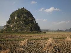 Guizhou China 2015 21 () Tags: china guizhou asia mountains