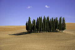 panorama toscano (Mimmo Arnesano) Tags: toscana siena valdorcia sanquirico 2016 mimmoarnesano fotofucina pienza panorama landscape