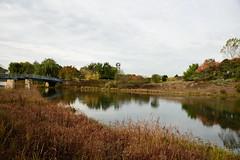 JJN_3116 (James J. Novotny) Tags: chicago conservatory botanical gardens garden flowers flower nikon d750 path paths skokie lagoons