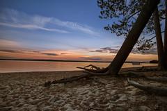 Fall evening at Kelly beach (wiltsepix) Tags: sunset kelly beach higgins lake michigan tree