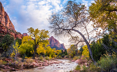 To the Zion Narrows! Nikon D810 Fine Art Zion National Park Autumn Hike! Dr. Elliot McGucken Fine Art Landscape Photography! (45SURF Hero's Odyssey Mythology Landscapes & Godde) Tags: to zion narrows nikon d810 fine art national park autumn hike dr elliot mcgucken landscape photography landscapes nature arts natural bryce canyonautumn winter hdr majestic leaves
