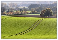 Autumn landscape near Schwalenberg (Lippe), Germany (2) (hjhoeber2) Tags: autumn autumnlandscape herbstfarben herbst lippe zeiss za sonnart18135 sonyalpha a700 sony sonnar germany teutoburgerwald