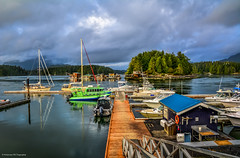 Tofino Harbour and Strawberry Island Float Home Community (SonjaPetersonPh♡tography) Tags: tofino clayoquotsound ocean longbeach tourists water westcoastvancouverisland vancouverisland nature surfing fisherman whalewatching britishcolumbia canada nikond5200 nikon 2016 westcoast boats boating harbour pacificrimnationalparkreserve bcparks