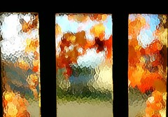 Autumn Stained Glass (Samyra Serin) Tags: autumn stained glass 2016 samyraserin samyra008 samsung galaxy s6 ifttt instagram phoneography bergeres aube grandest champagne
