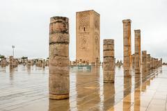 Hassan Tower and Mosque, Rabat (Sue_Hutton) Tags: maroc morocco november2016 rabat autumn northernmorocco