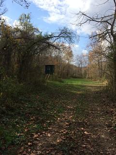 Kentucky Whitetail Hunt 14