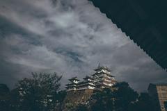 Himeji Castle  Japan () Tags: olympus penf 714mm f28 pro himeji castle   japan kansai